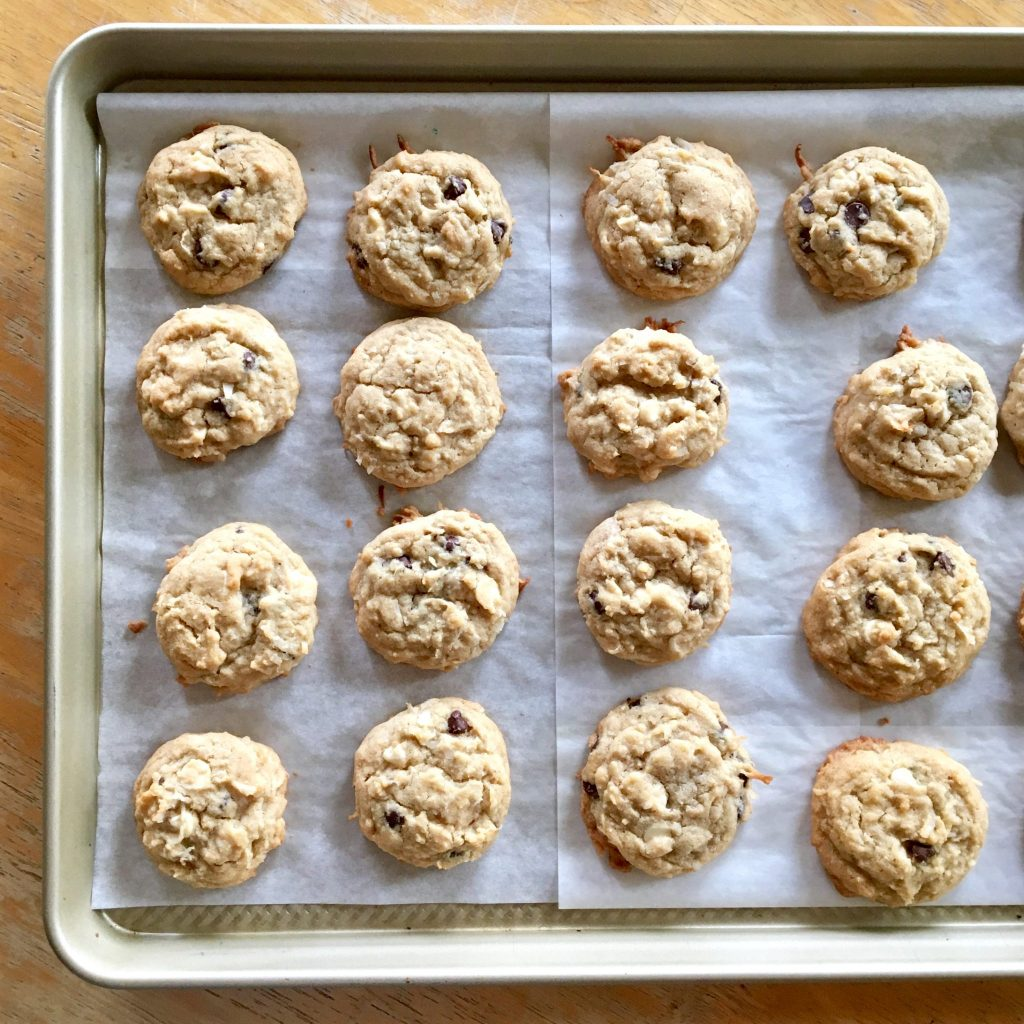 Cinnamon Chocolate Coconut Cookies
